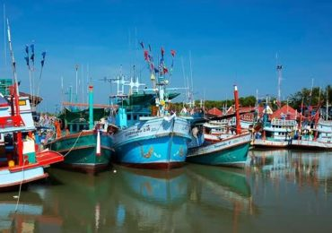 Fisheries Dept: bright future in local fisheries