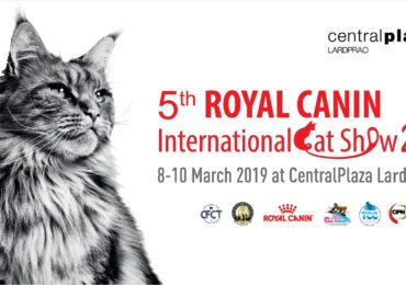 5th Royal Canin International Cat Show 2019' from 8th – 10th March 2019 at BCC Hall, 5th floor,  CentralPlaza Ladprao